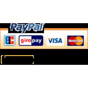 paypal visa master kart